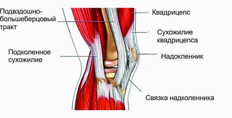 нестероидные противовоспалительные средства для коленного сустава